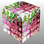 Passion cube esc